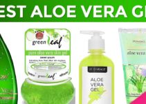 Top 10 Best Aloe Vera Gel In India – Reviews and Buying Guide 2021
